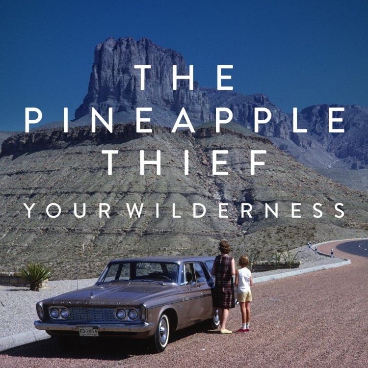 The Pineapple Thief – Your Wilderness